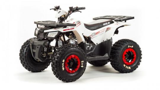 Квадроцикл 150 Wild